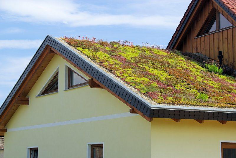 Zelené střechy pro pasivní domy