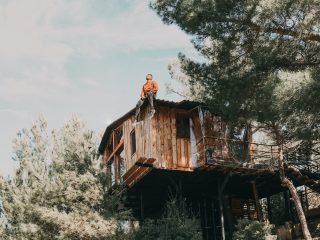 Dřevěný posed v přírodě